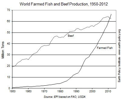 farmed-raised_fish_outpassed_beef_production